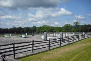 Ring and paddocks